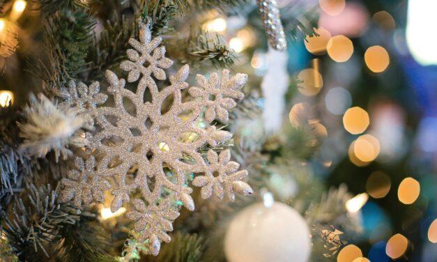 Intratuin Leidsche Rijn begint weer met opbouw kerstshow