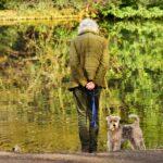Hondeneigenaren in Haarlem en omgeving niet enthousiast over stichting Oopoeh