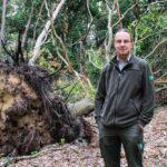 Landgoed Broekhuizen weer open na vernietigende valwinden