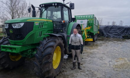 """Dutch farmers protesting – """"We are not bad people, but it is about our future"""""""