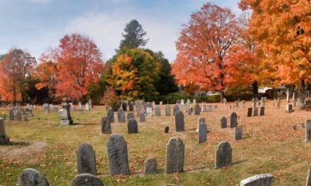 Seance op begraafplaats Rusthof in Leusden niet te verantwoorden
