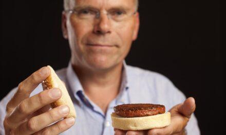 Kweekvlees: de toekomst voor vleeseters en boeren